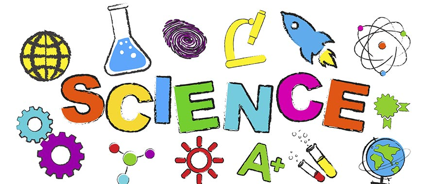 Our 3 favorite science worksheets for each grade : Parenting