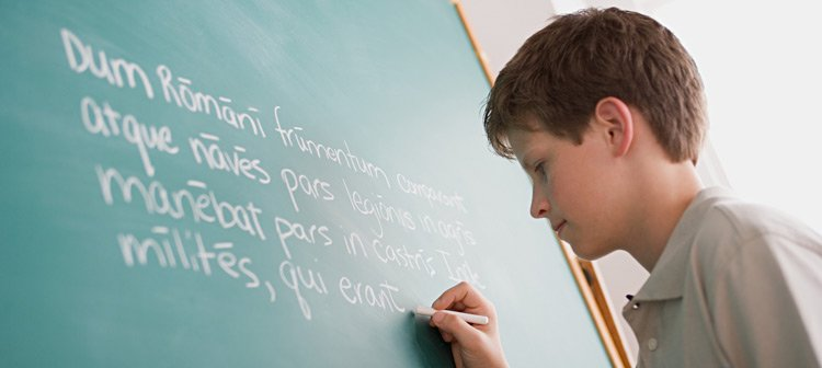 Everyone should learn a foreign language at school?