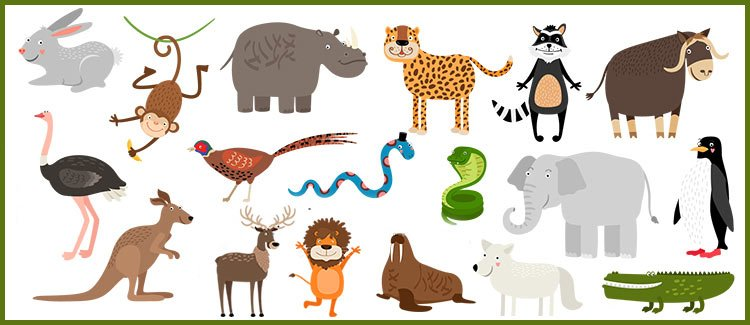 3rd grade science worksheets about animals | Parenting