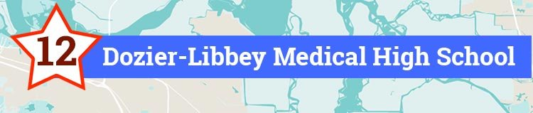 12- Dozier-Libbey Medical