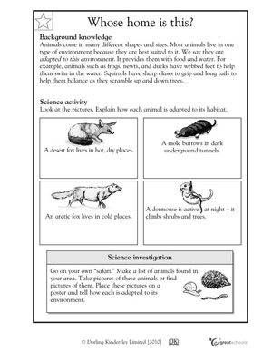 winter worksheets activities 4 6 how animals adapt to habitat greatschools. Black Bedroom Furniture Sets. Home Design Ideas